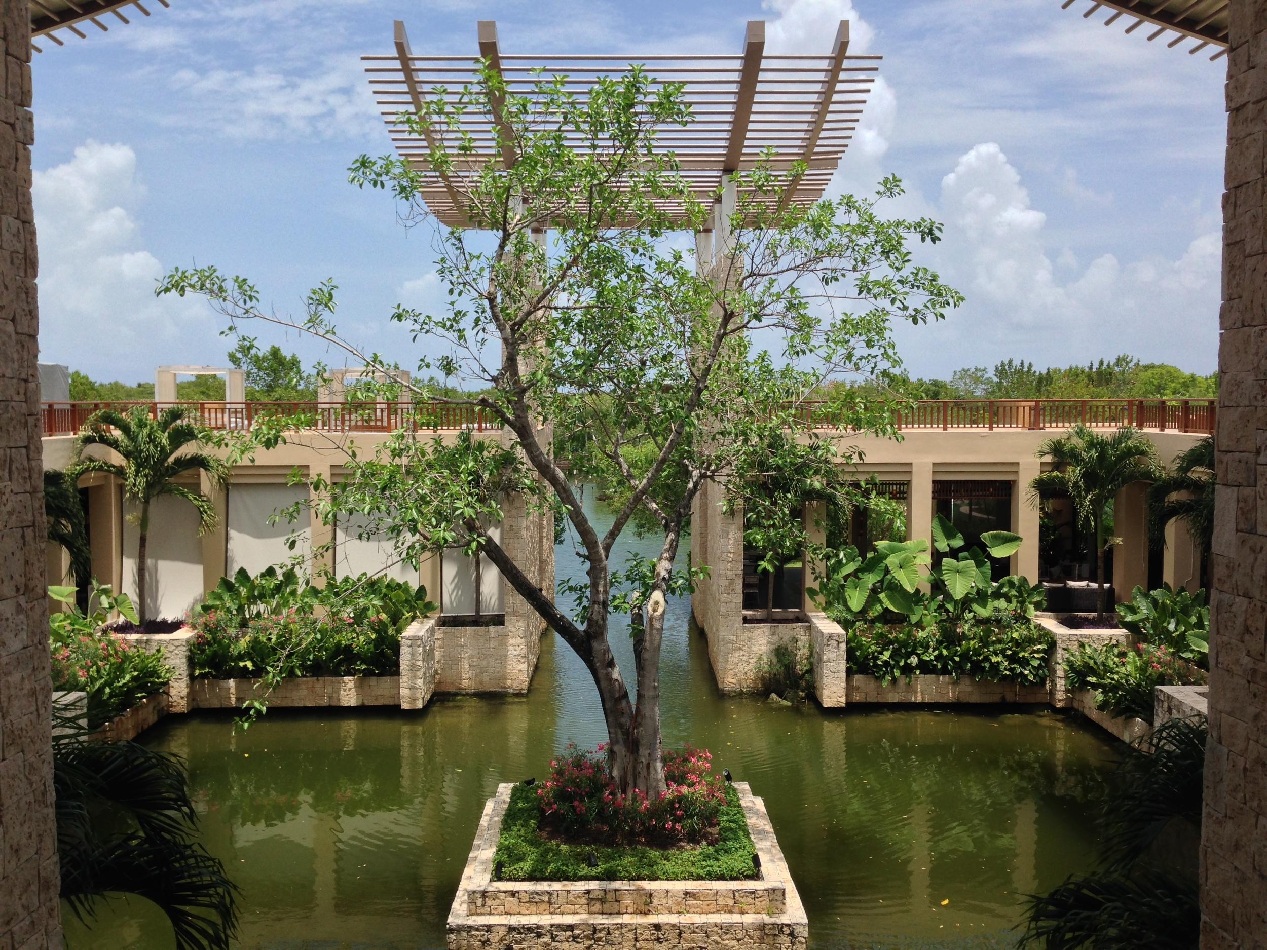Mexico. Banyan Tree Mayakoba.