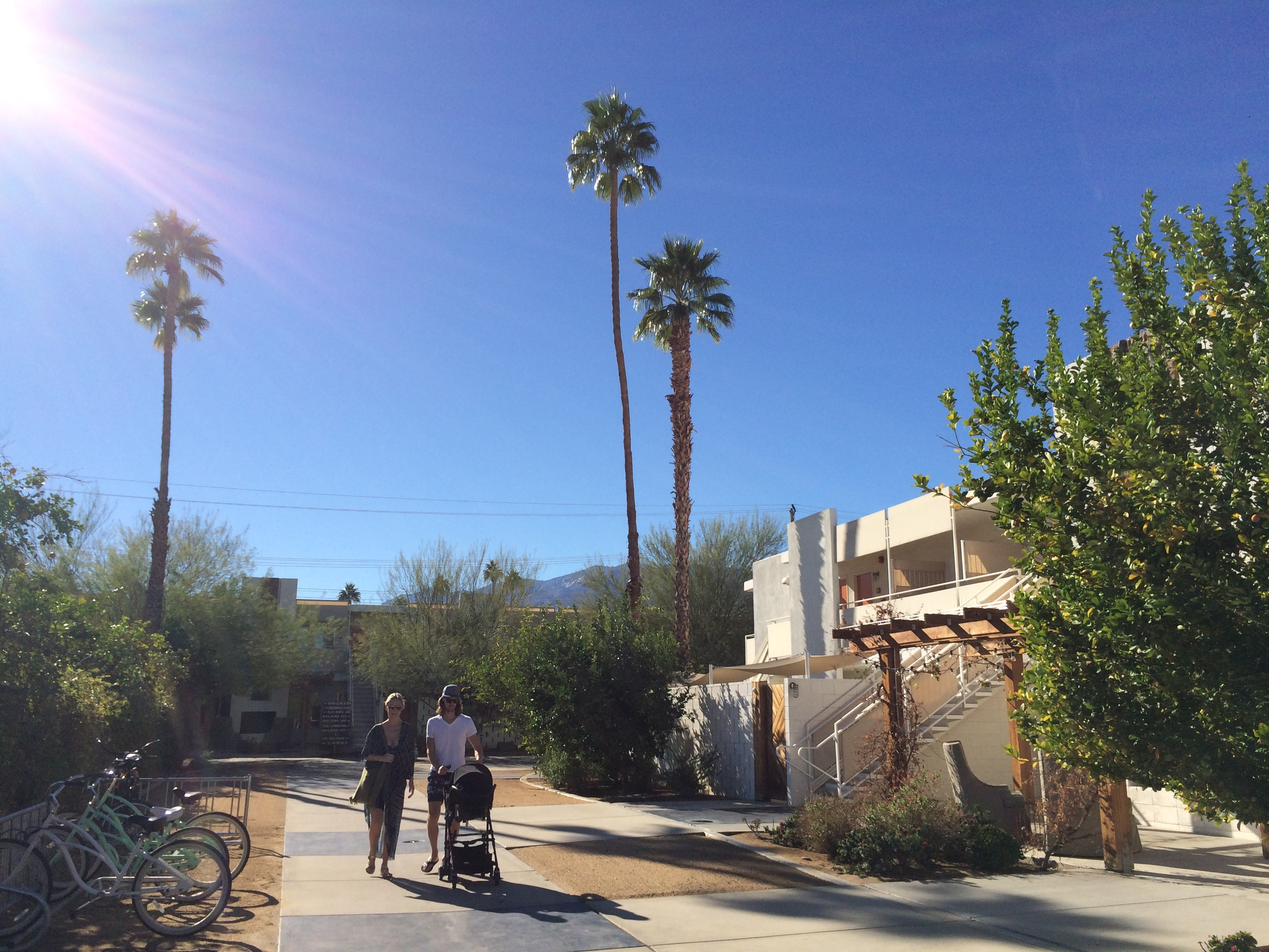 Bye bye Palm Springs. Until next time.