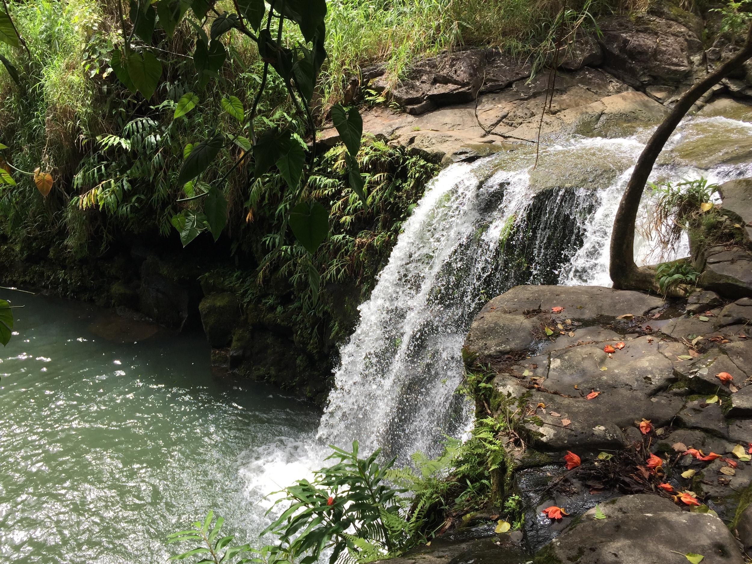Waterfall by the roadside