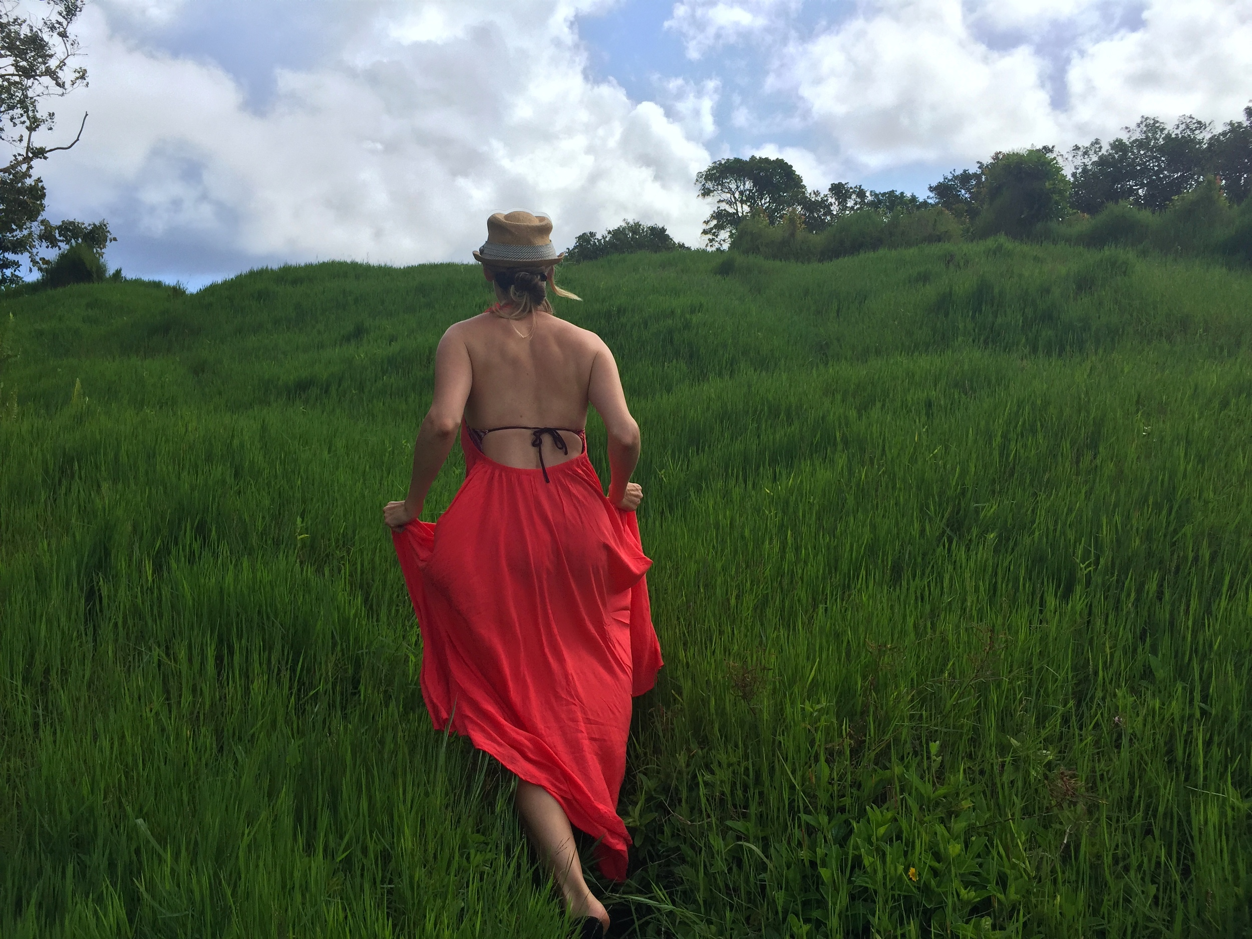 Walking infeilds of green beside the Rainbow Eucapyptus grove