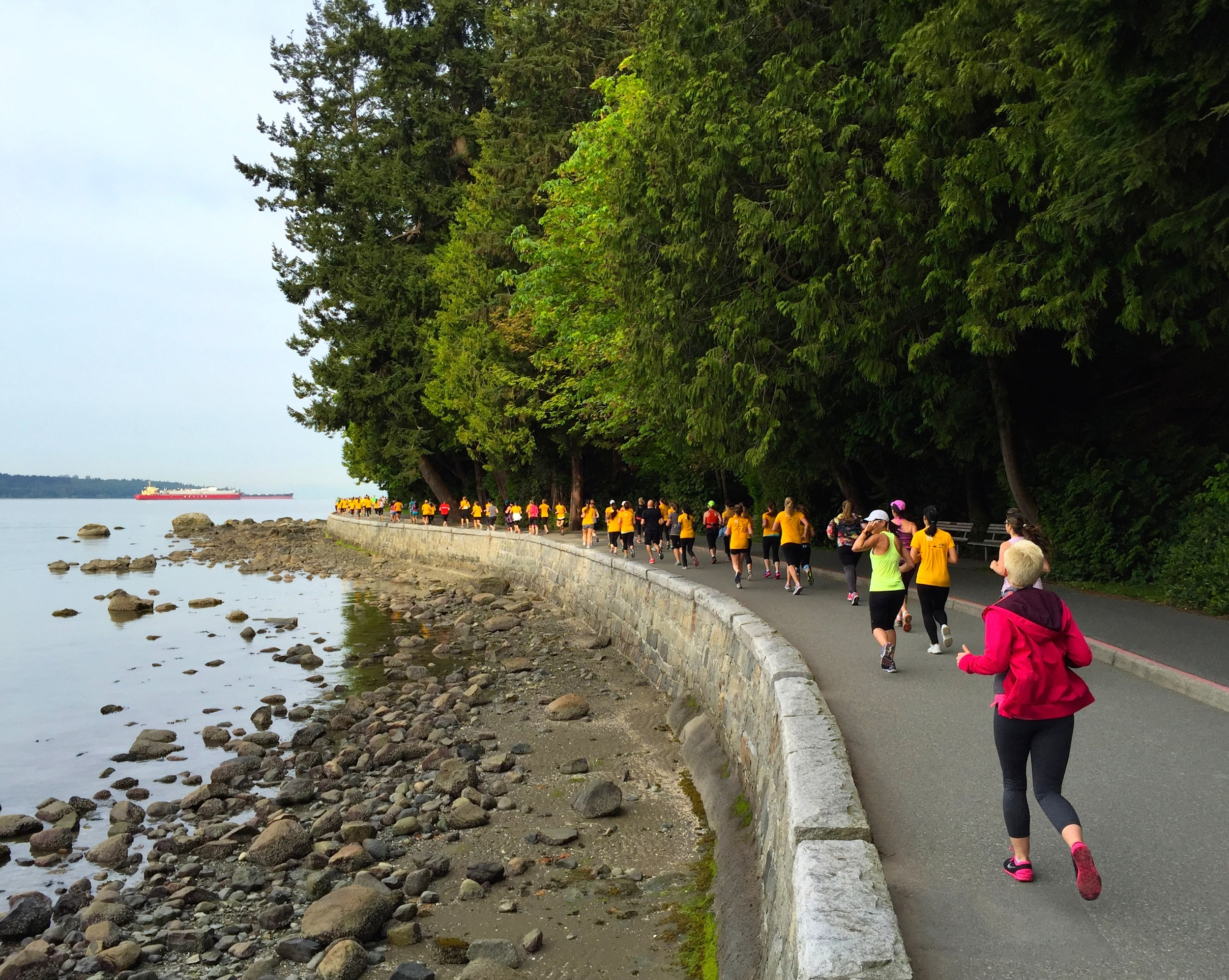 The entire run meanderedalongside the Pacific Ocean on the Stanley Park Seawall.