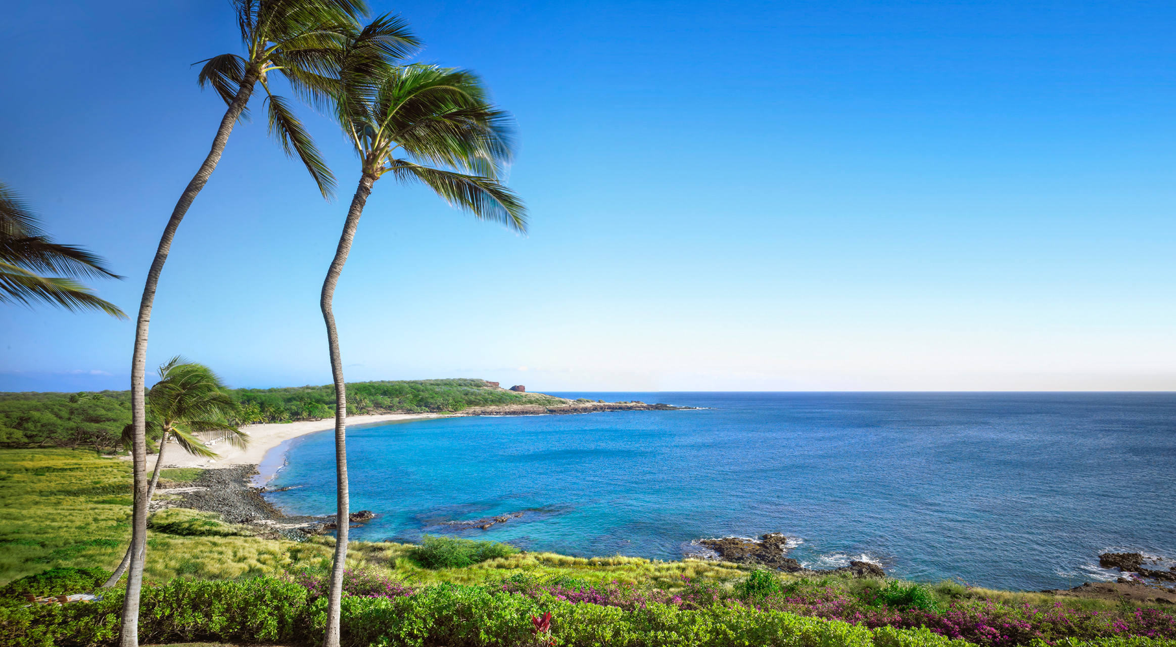 Hulopoe Bay: Where pods of Hawaiian spinner dolphins play and the beach is paradise found