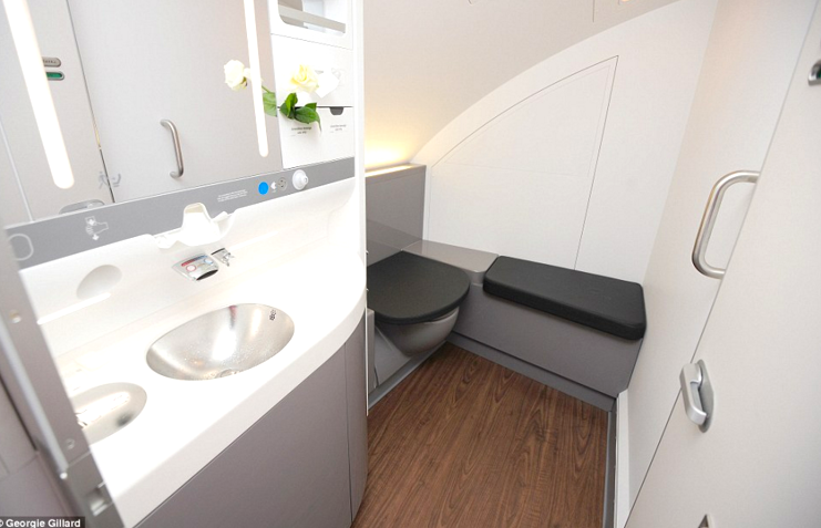 Airplane bathroom lavatory etiquette