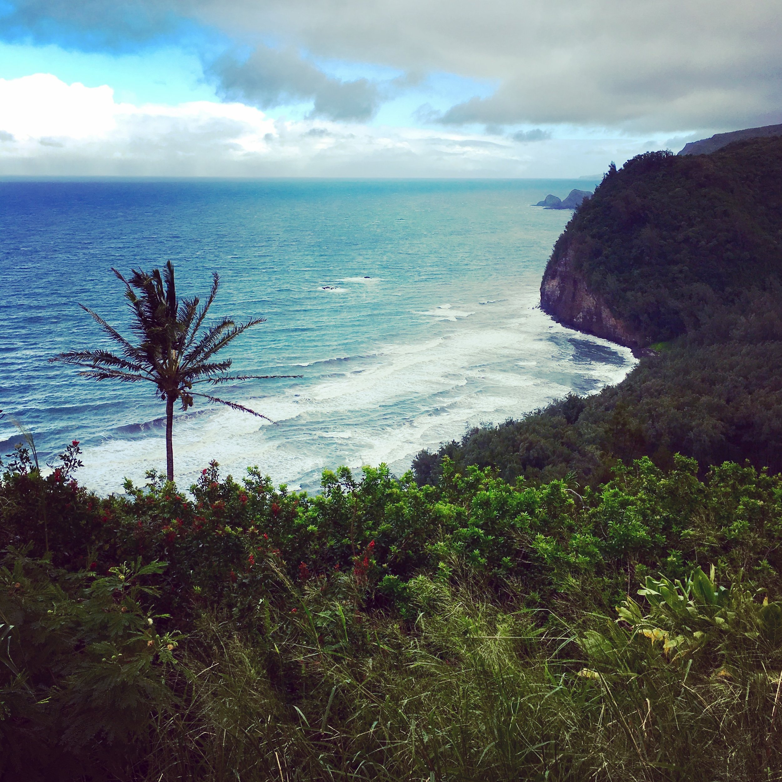 Pololu Valley Lookout , a must-do viewpoint and hike overlooking the island's northeastern coastline
