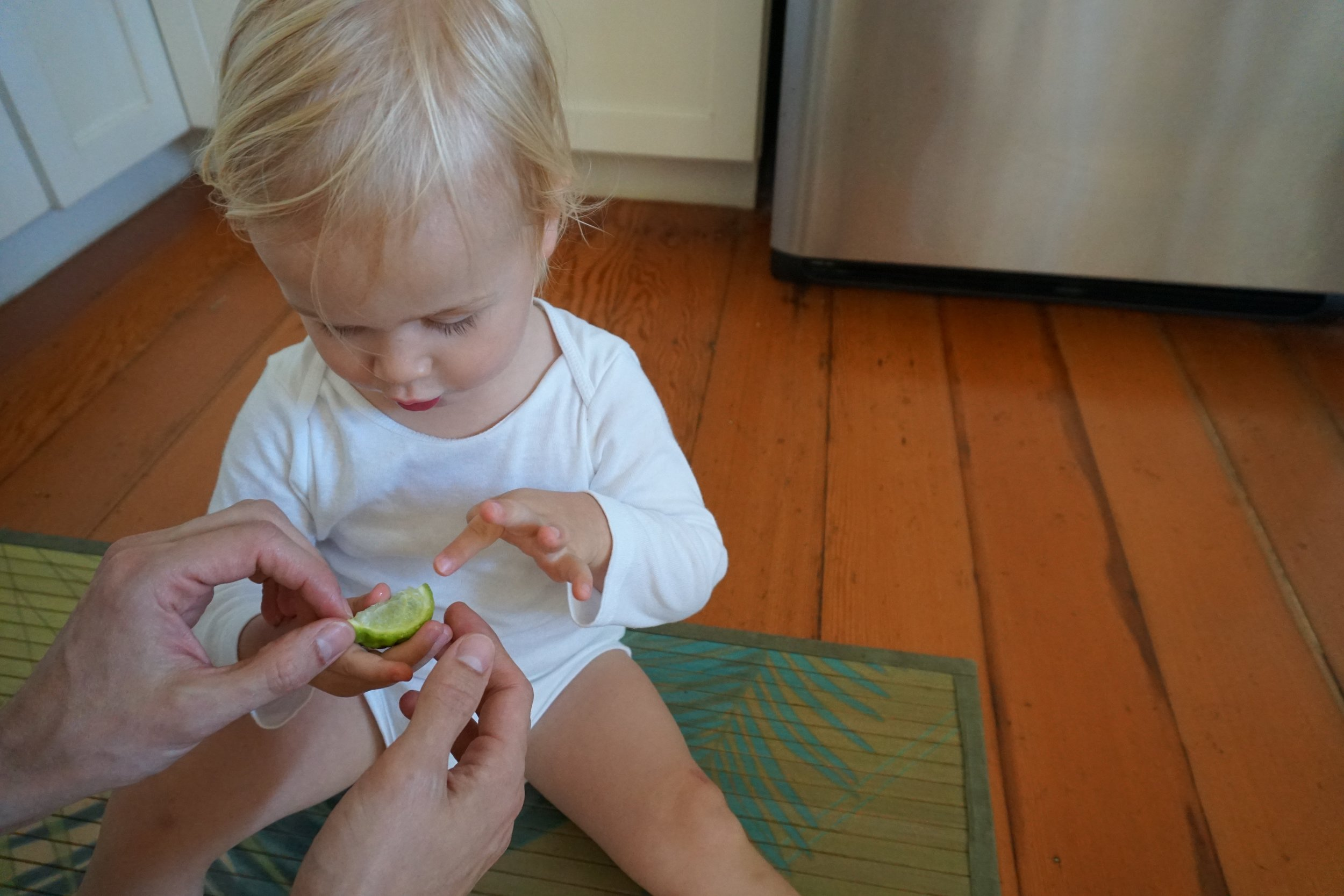 Checking out the just-picked lime plucked from a tree outside our cottage