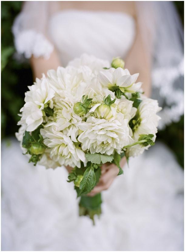 Sydney Wedding Photos by Mr Edwards Photography. Engagment session_1295.jpg