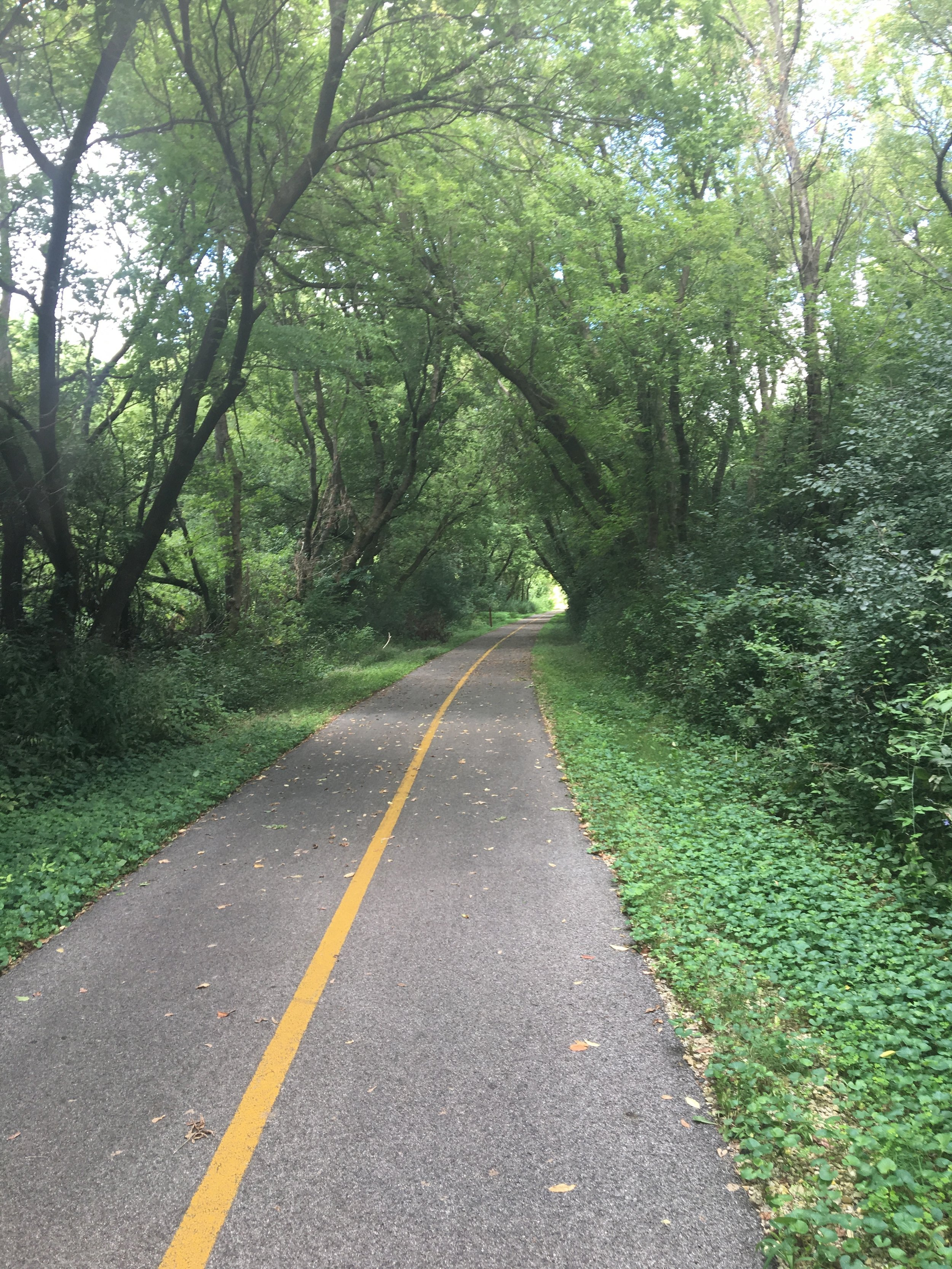 I went to the local bike trail and walked 4 miles to the next town and back.