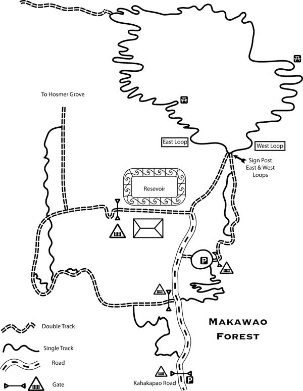 The Makawao Forest mountain bike trail map.