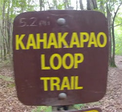 The Kahakapao mtb trail sign in Makawao Forest on Maui.