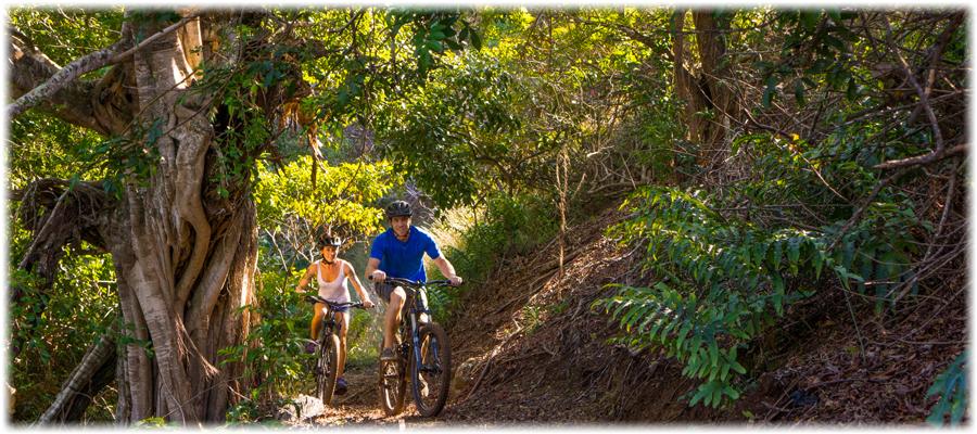 bike park maui bench trail