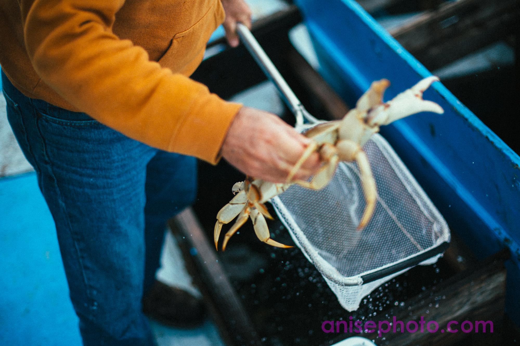 crabfeed-5.jpg