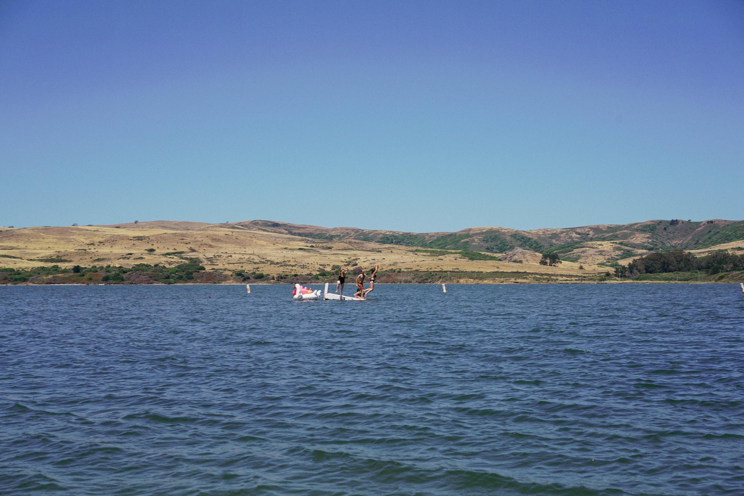 marin-county-fair-anise-photo (18 of 22).jpg