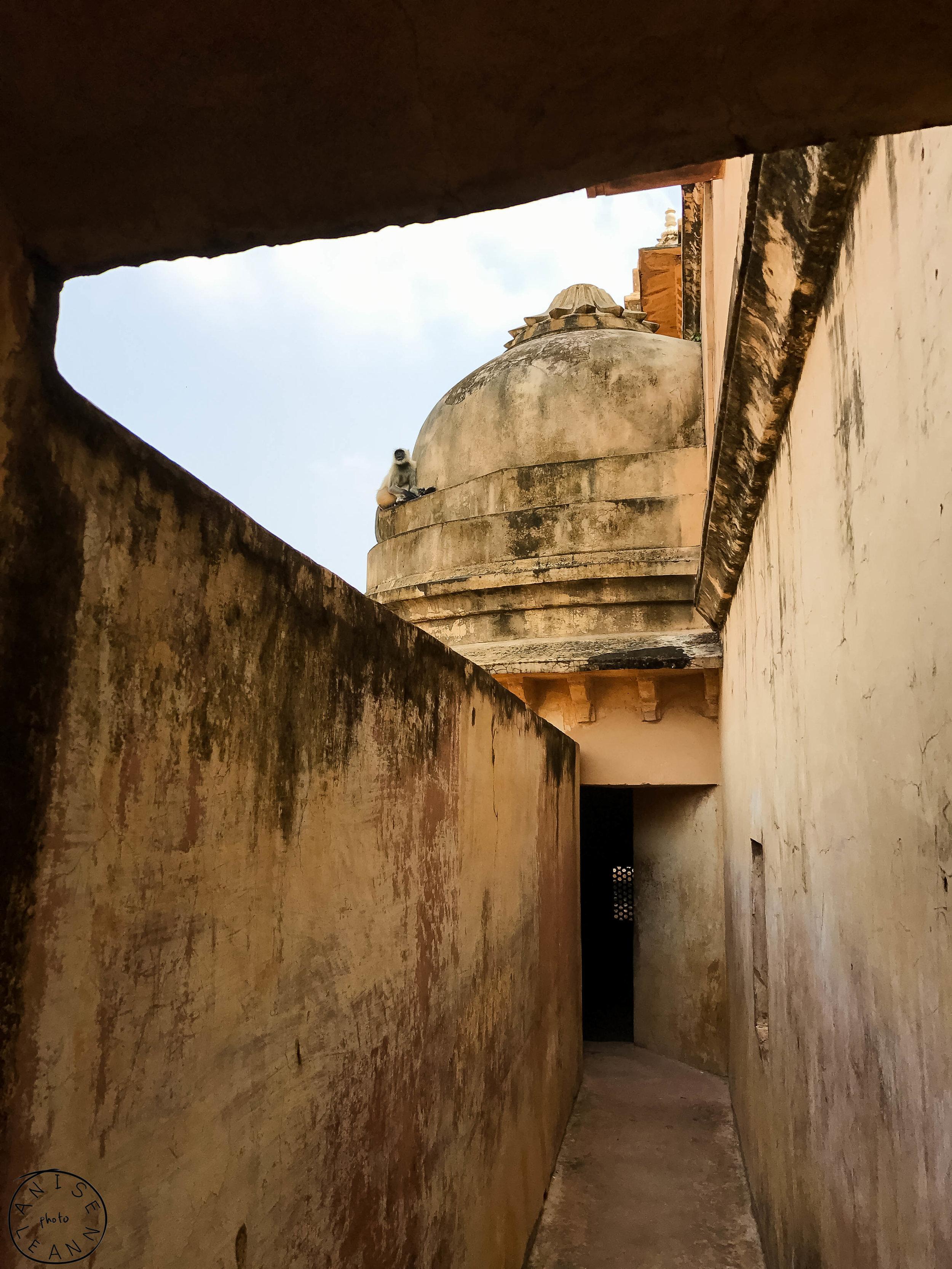 India-Jaipur-Day2-52.jpg