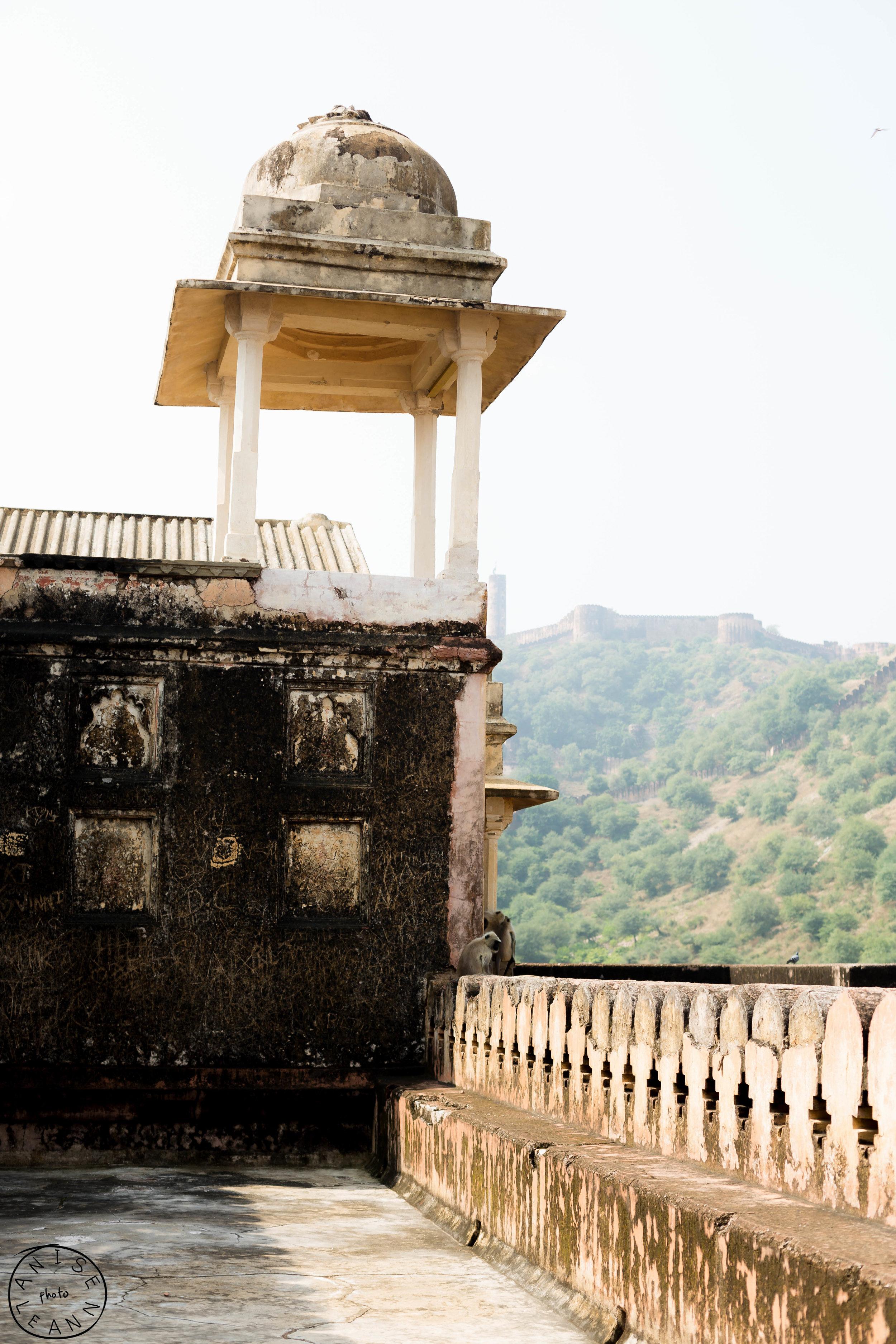India-Jaipur-Day2-76.jpg