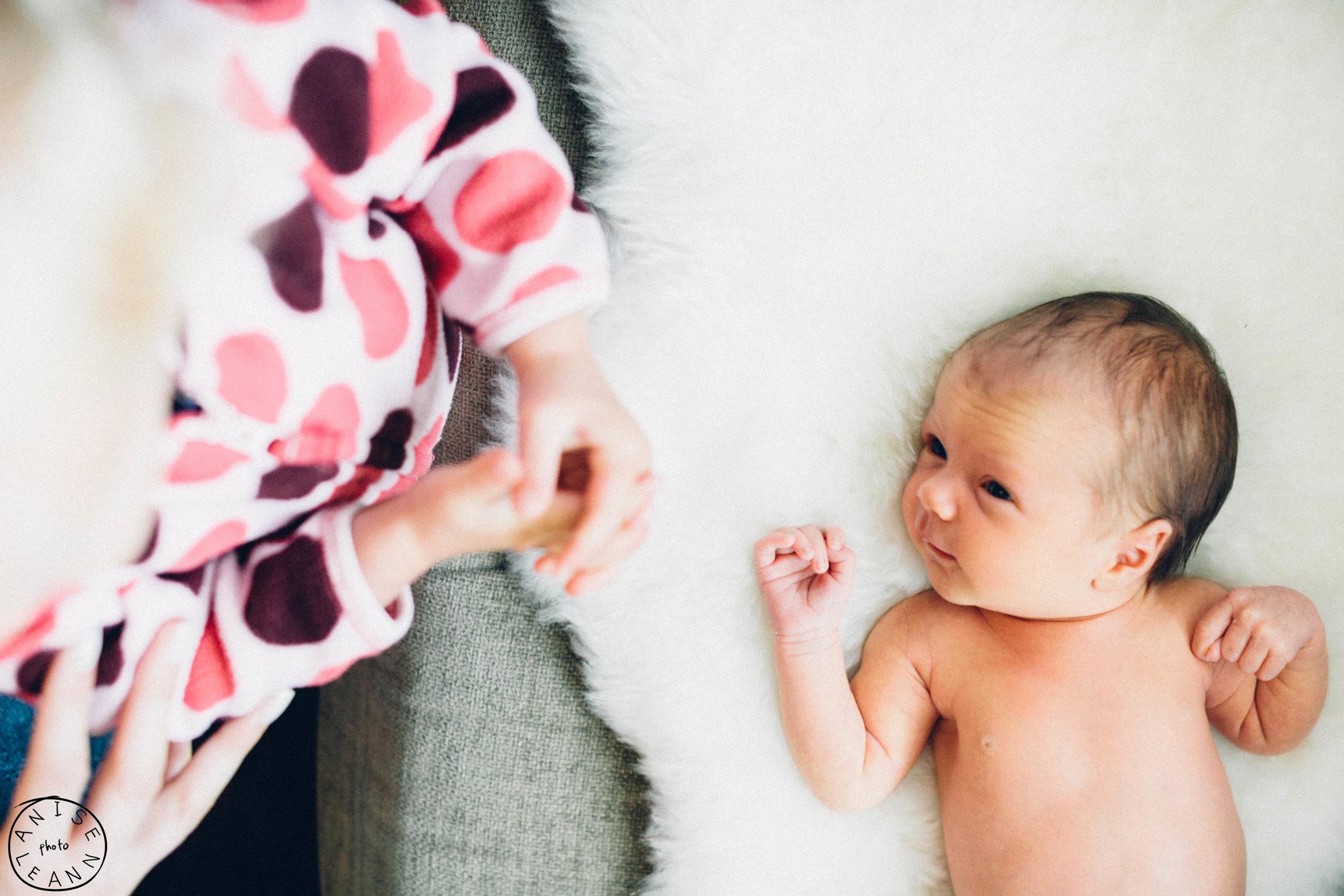 Arlowe Newborn -1.jpg