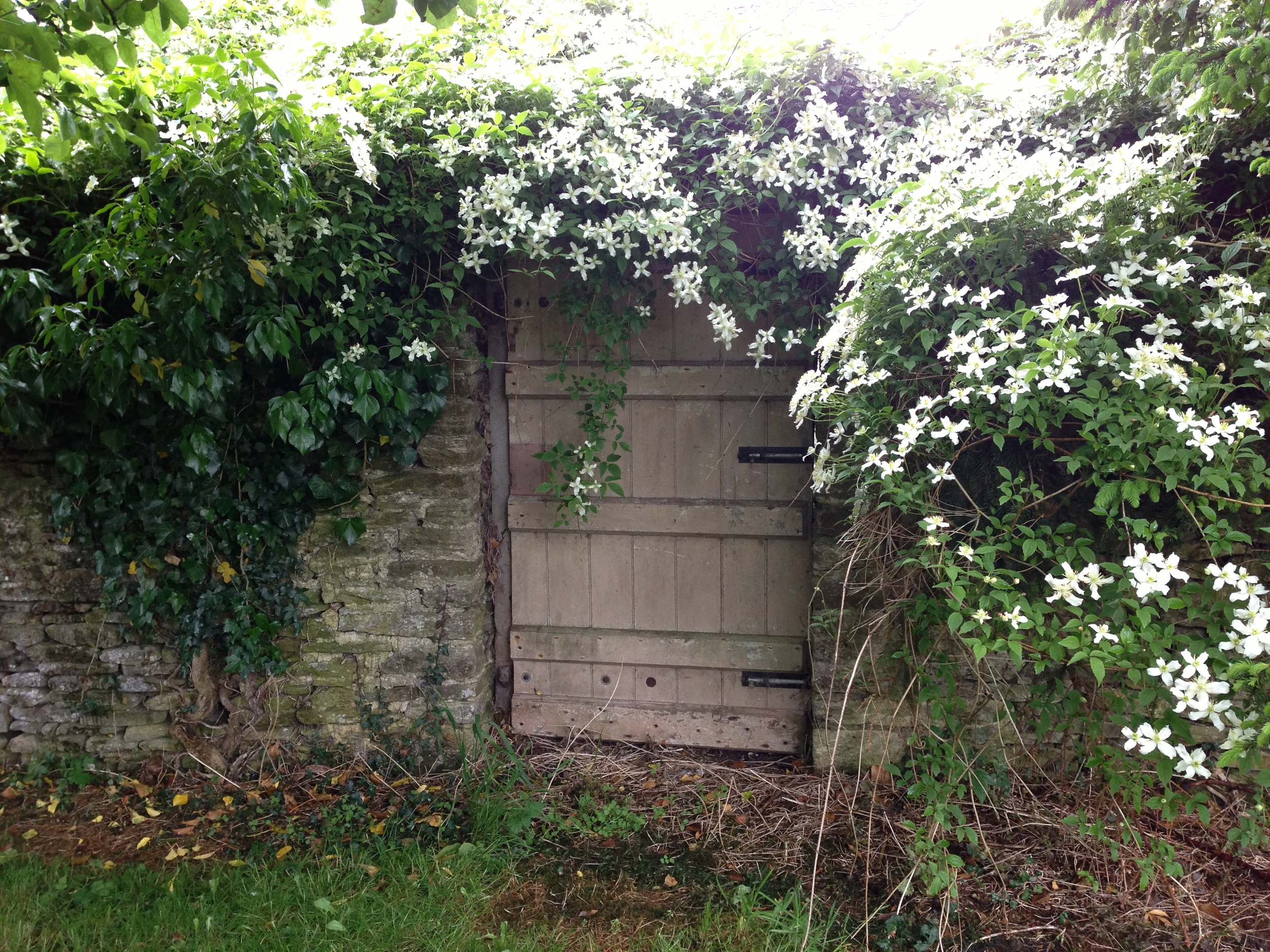A secret door in the garden at Mays Farm