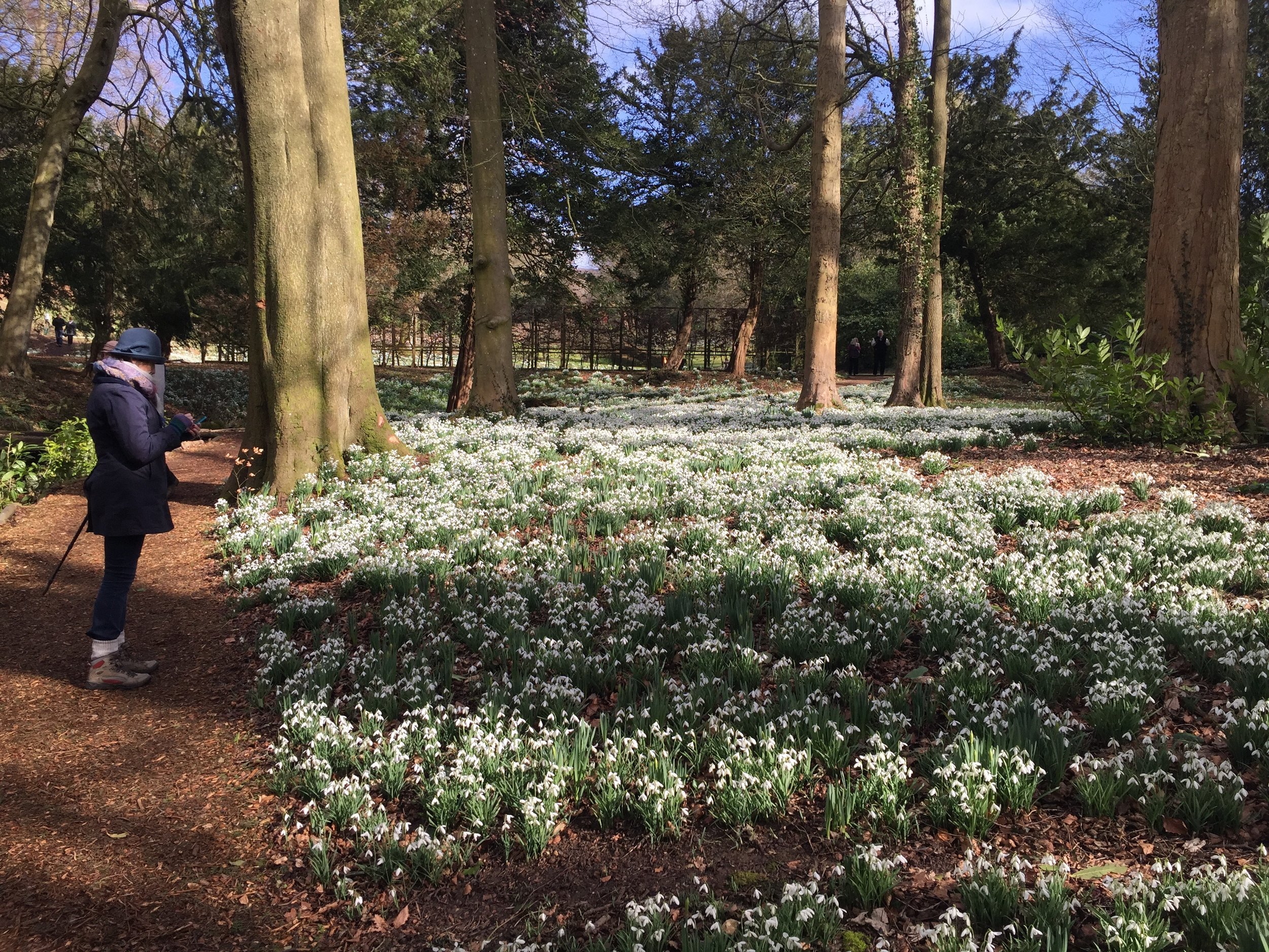 Painswick - the Rococo Gardens