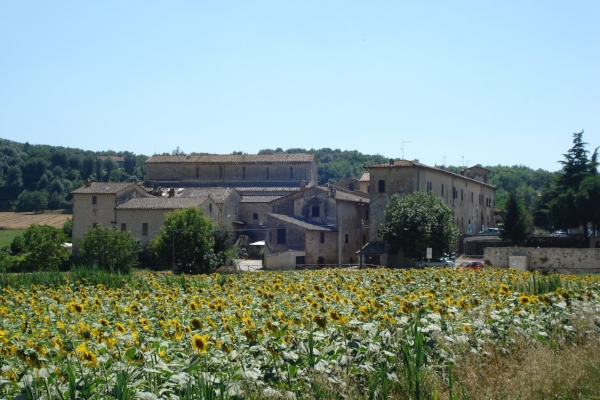 Abbe di Isolda, on the road to Monteriggioni (Walk part one)