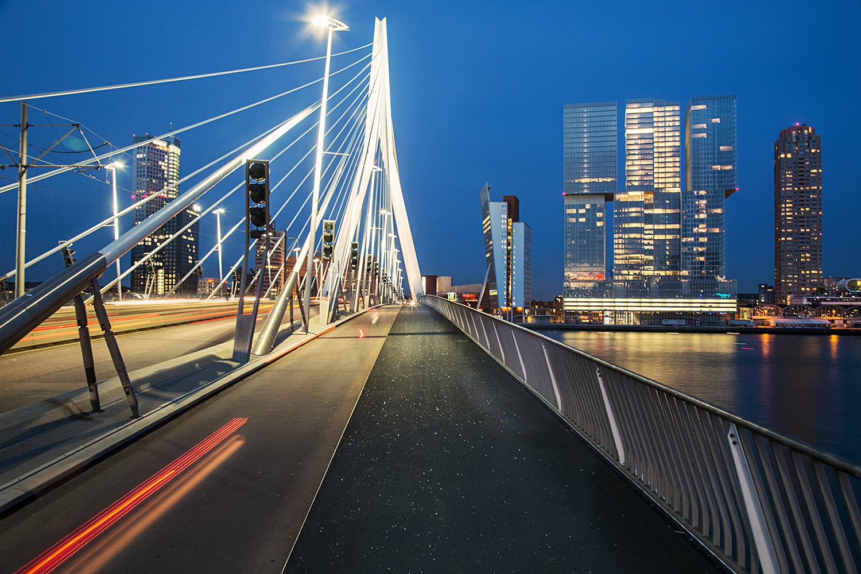 Erasmus+Bridge+Rotterdam+Swan.jpg