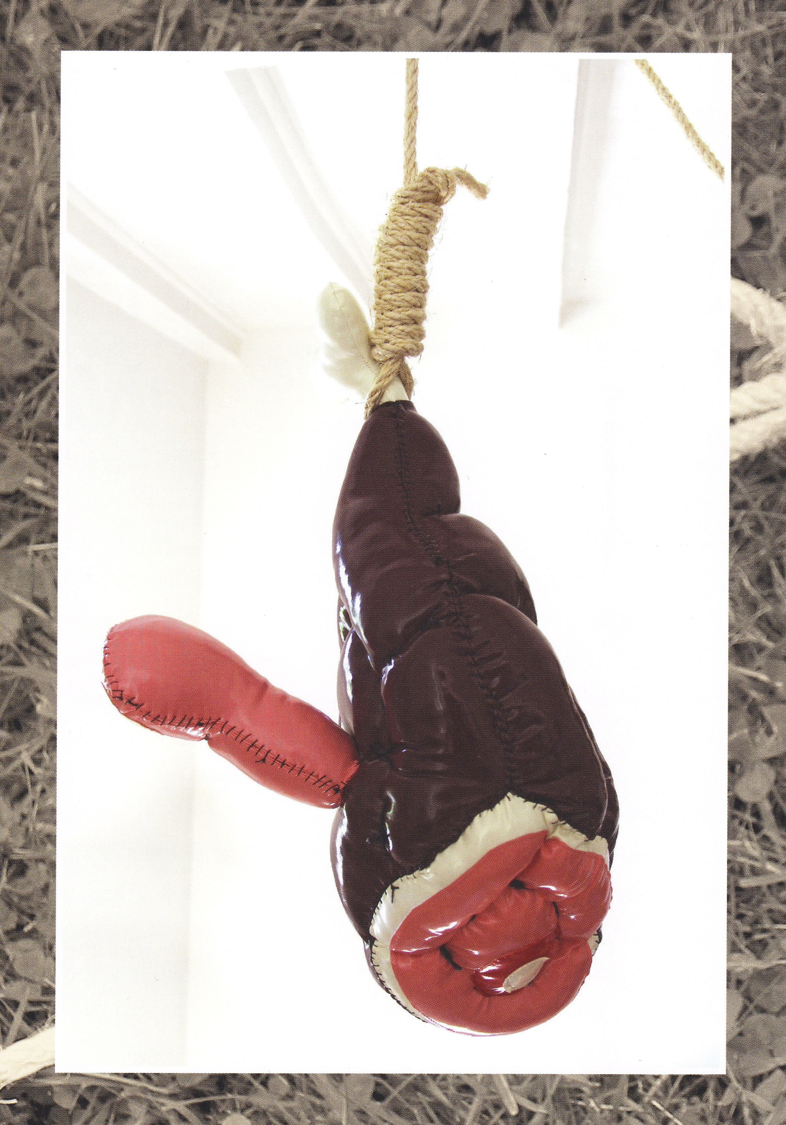 David Gouny - Peter Ham.jpg