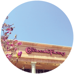 @laurenelizhook  Caribou Coffee, Anthropologie, Pottery Barn, Cheesecake Factory. Mom needs to visit more often ;) #sweetspots