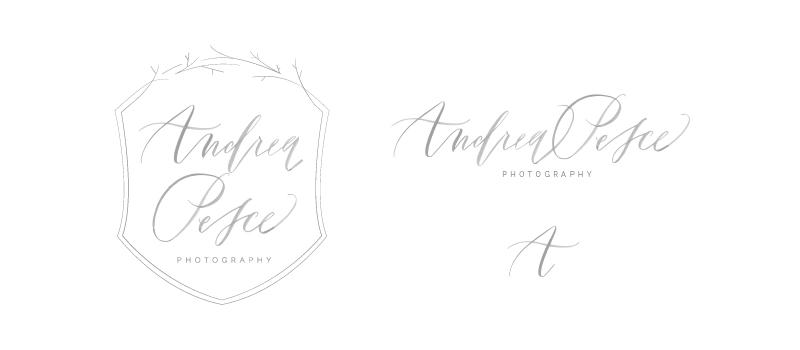 Andrea Pesce brand and website design // Elle & Company