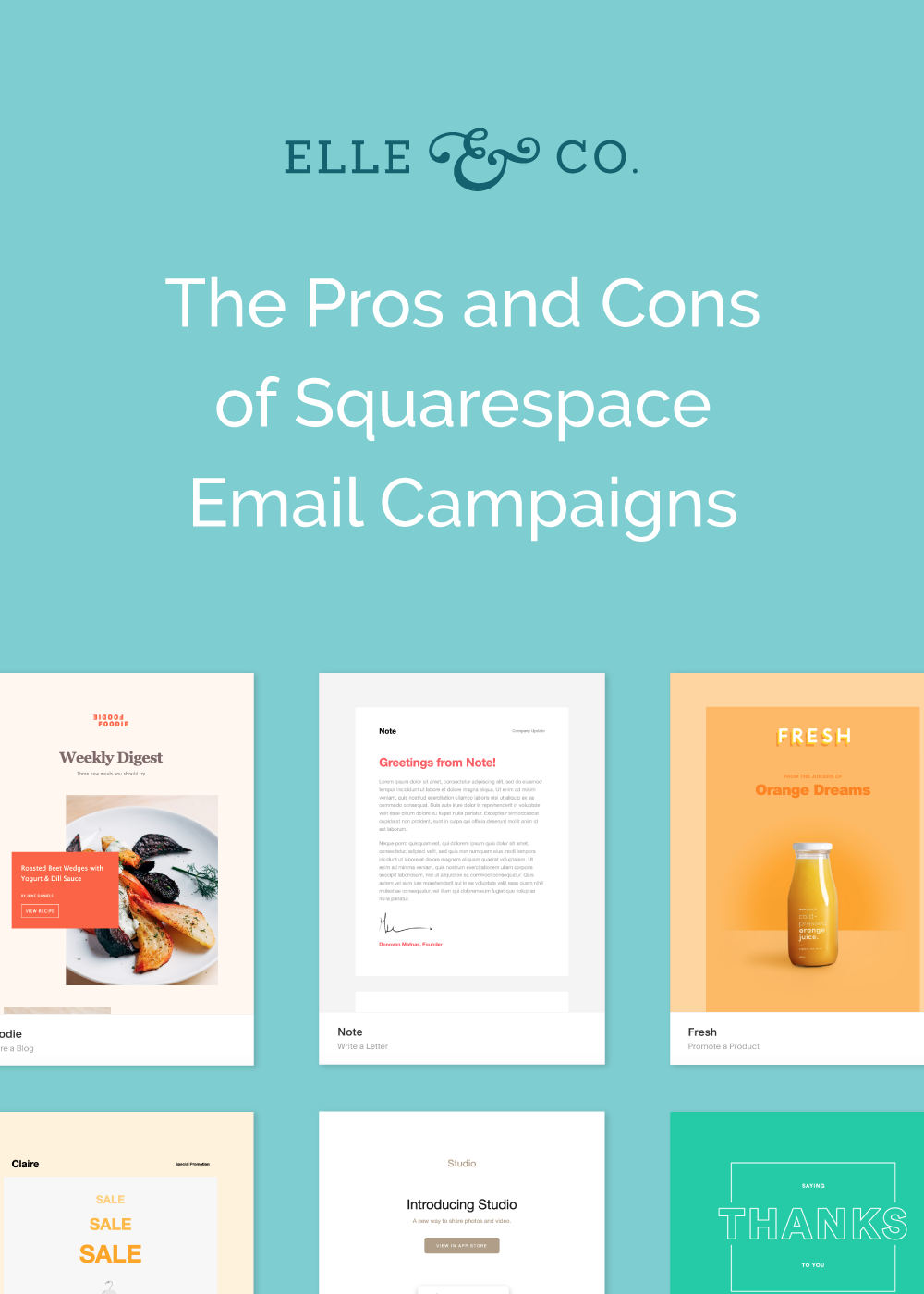 The Pros and Cons of Squarespace's New Email Campaign Feature | Elle & Company