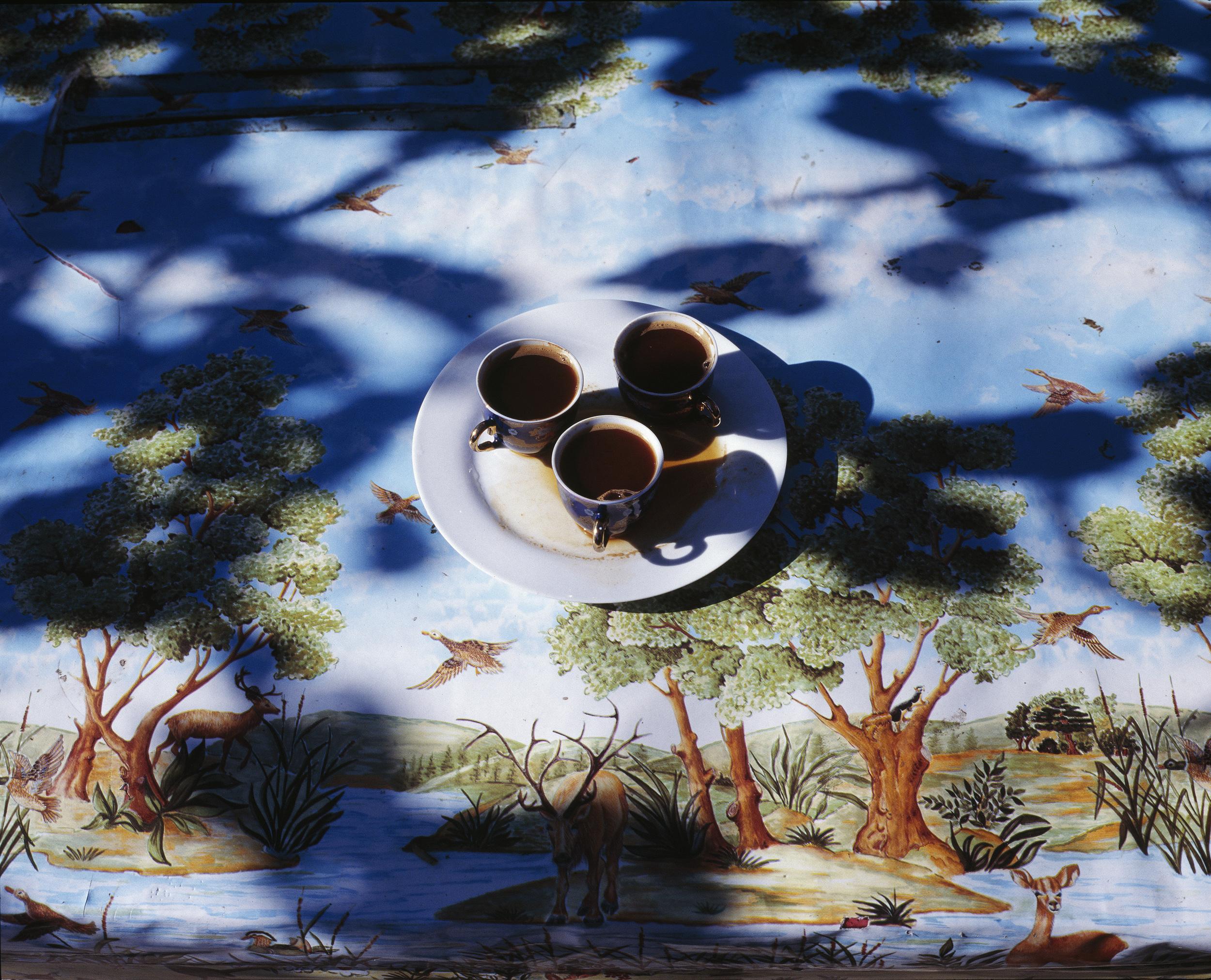 GAGRA - egor slizyak - kofe.jpg