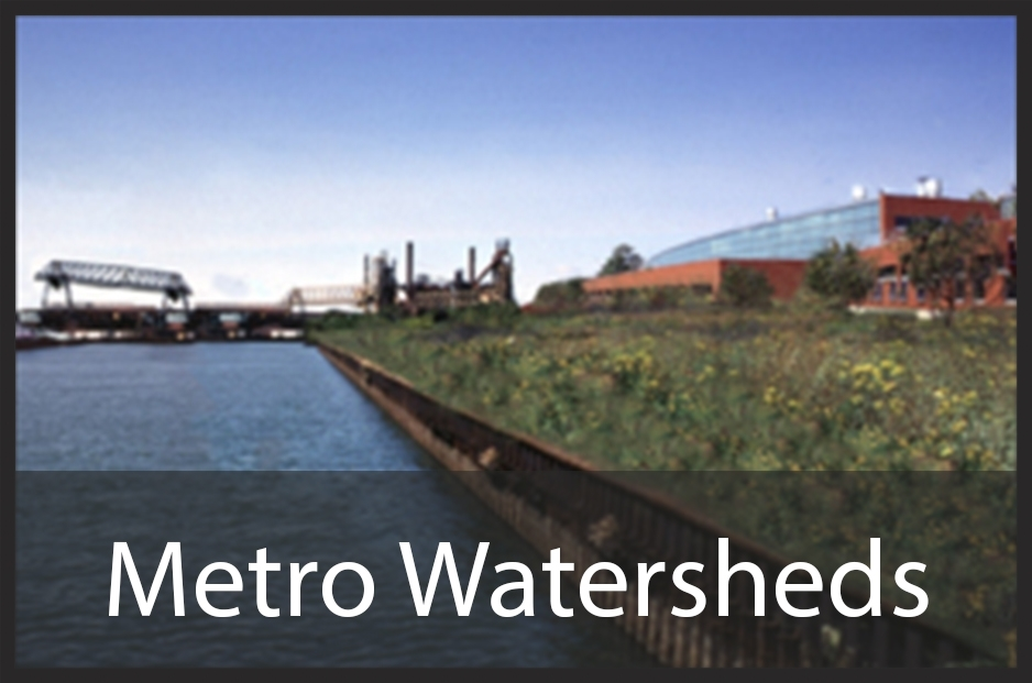 metro watershed2.jpg