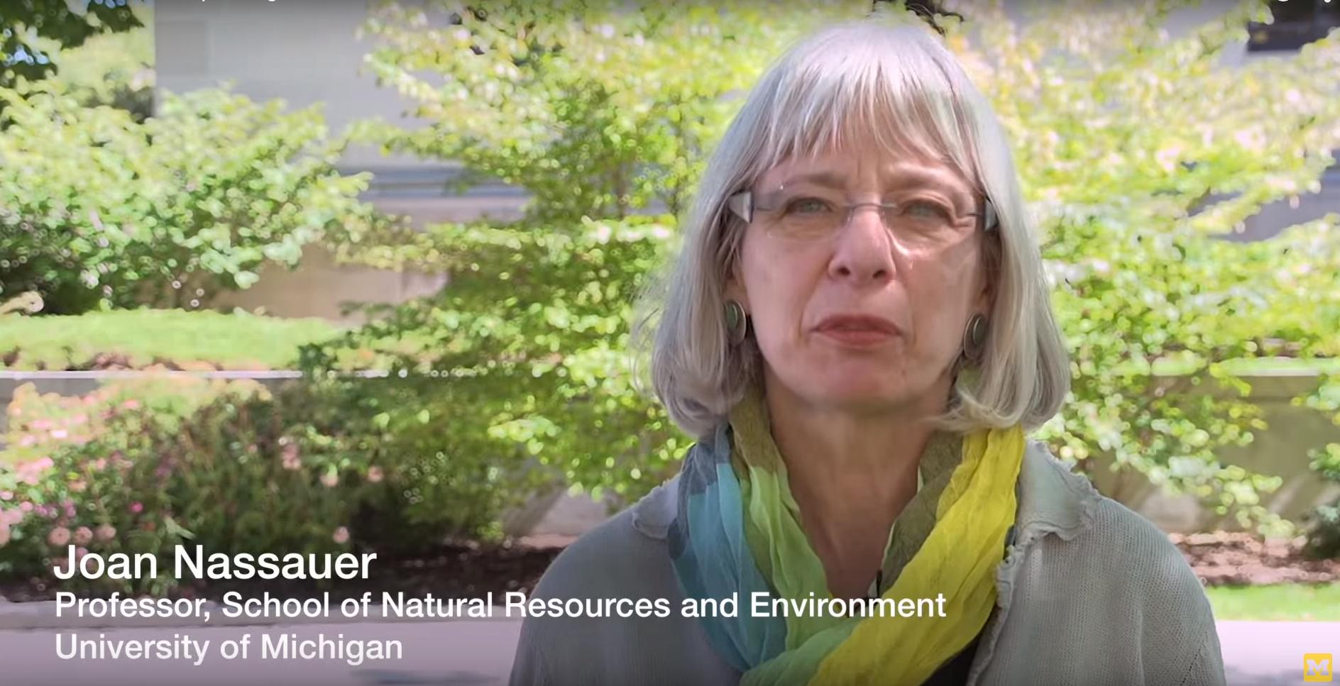Listen to Professor Nassauer speak about bioretention gardens in Detroit