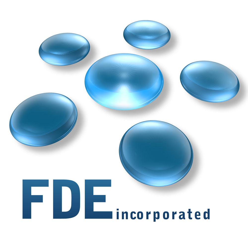 FDE Inc. Logo