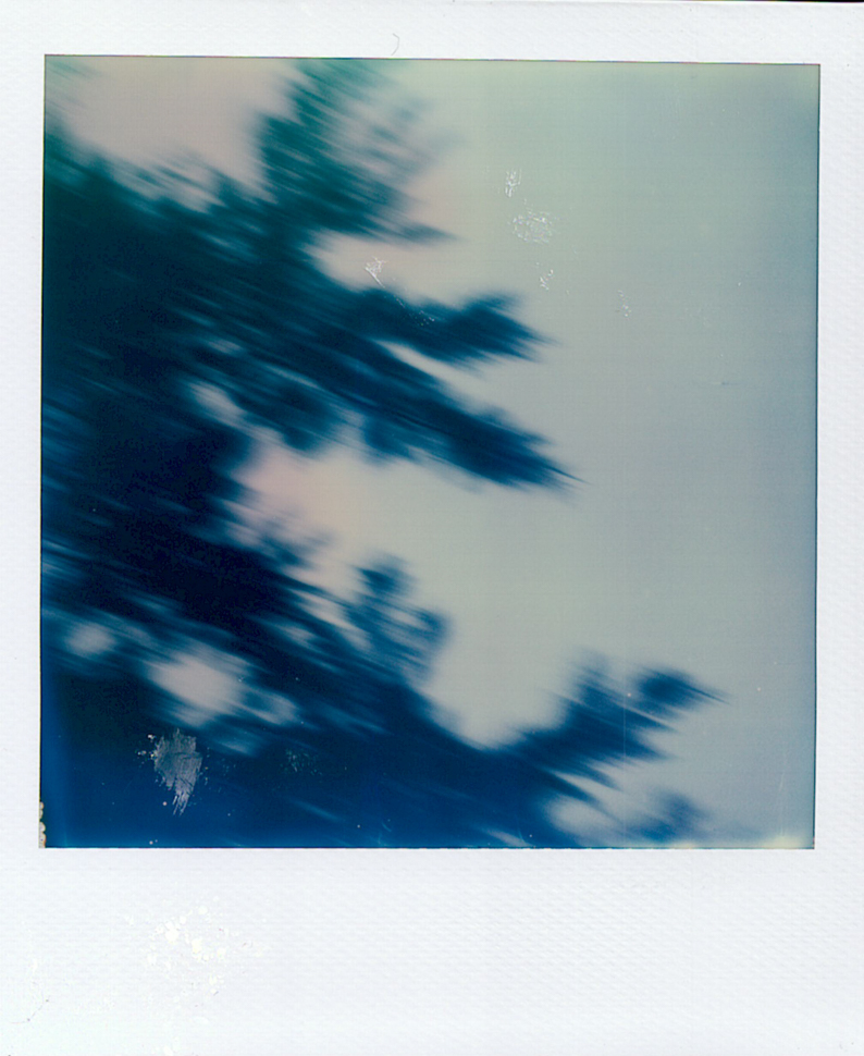081_00011_Amalia&Brian_JBM_Polaroids_SS_NOWM.jpg