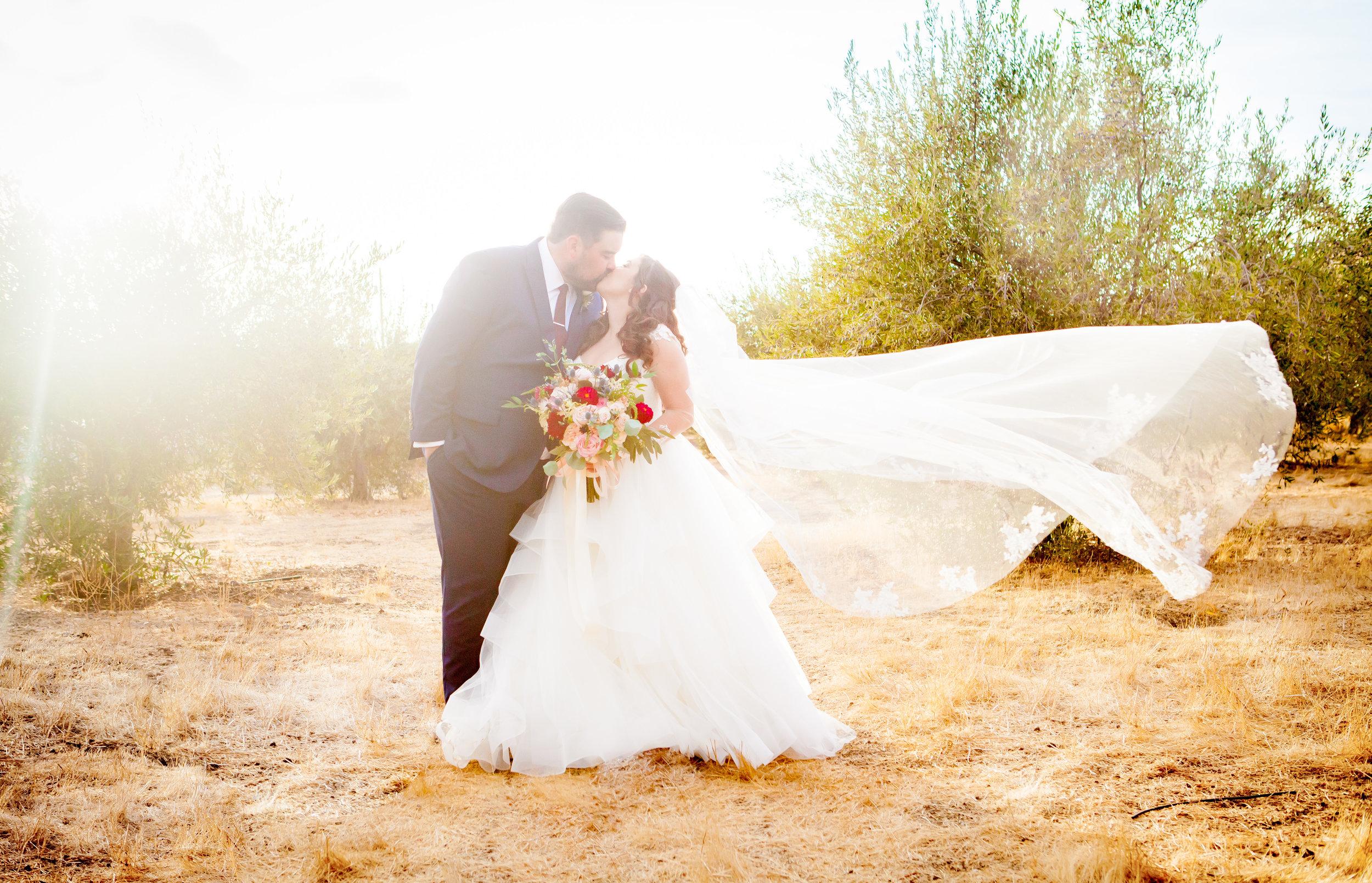 Lauren and Shaun's Wedding-316.jpg