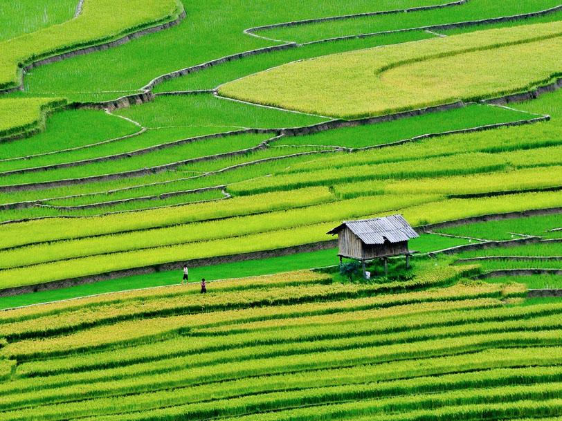 Foto:Phuong Nguyen
