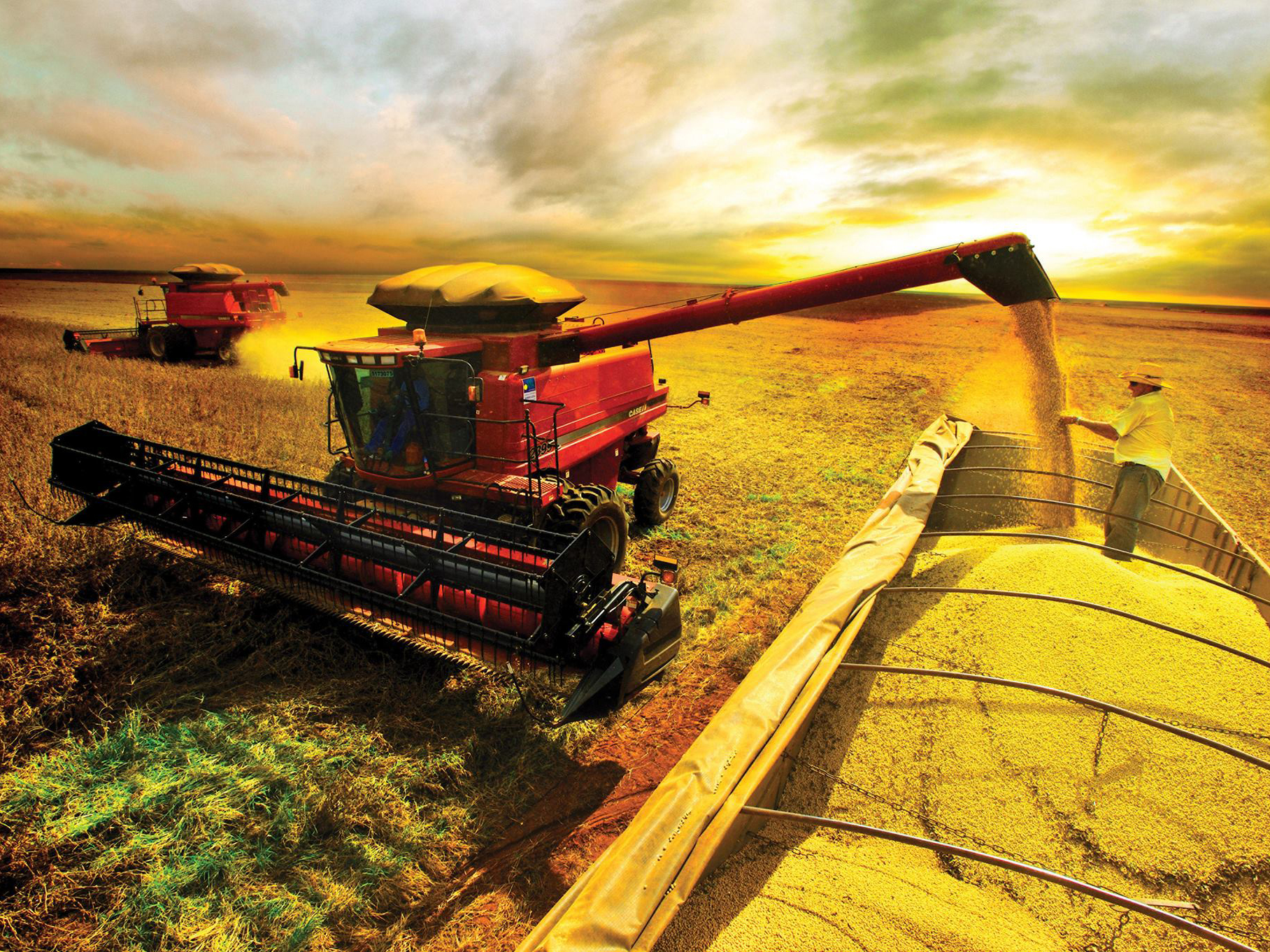 Secretaria de Defesa Agropecuária oferece DAS 1 e 3 para atrair ...