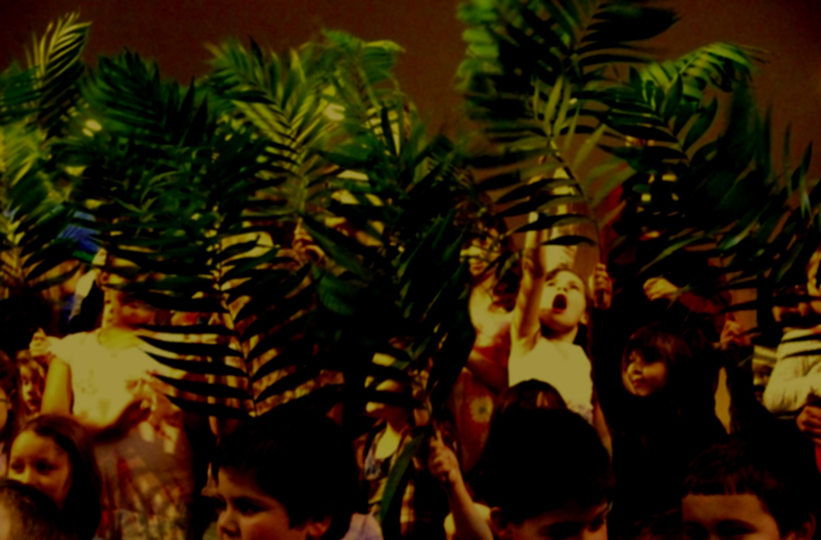 children-with-palms.jpg