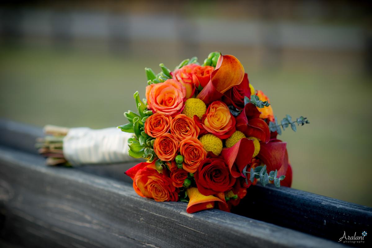 Pepper_Plantation_Wedding0047.jpg