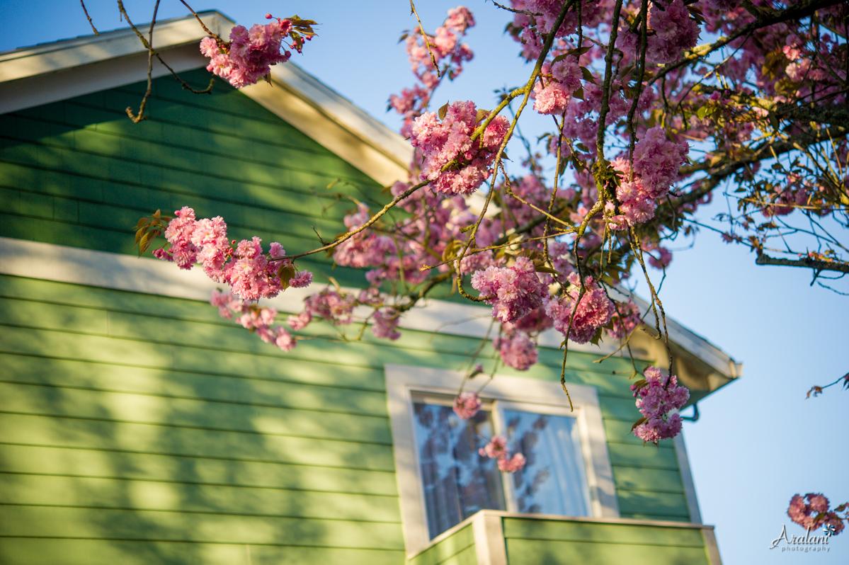 Spring_in_Portland008.jpg