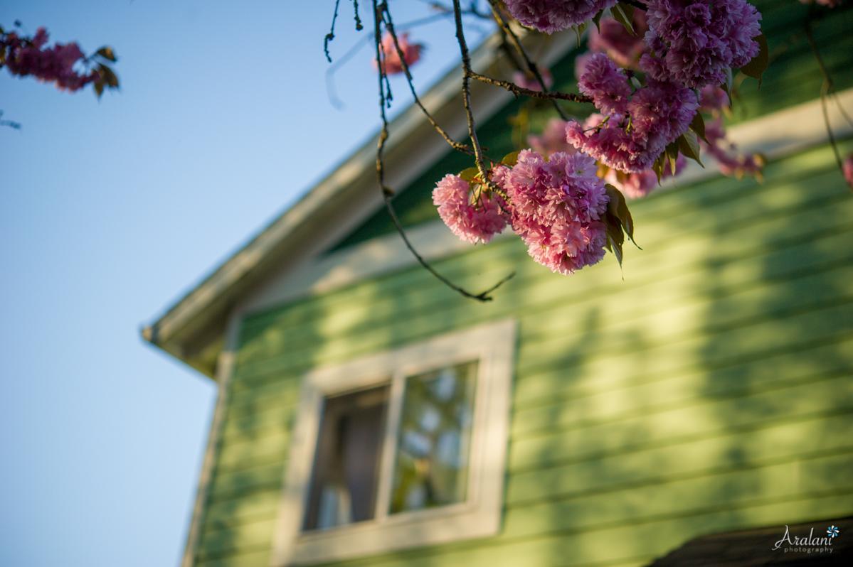 Spring_in_Portland009.jpg