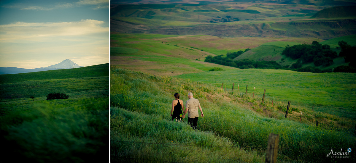 Columbia_River_Gorge_Engagement012.jpg