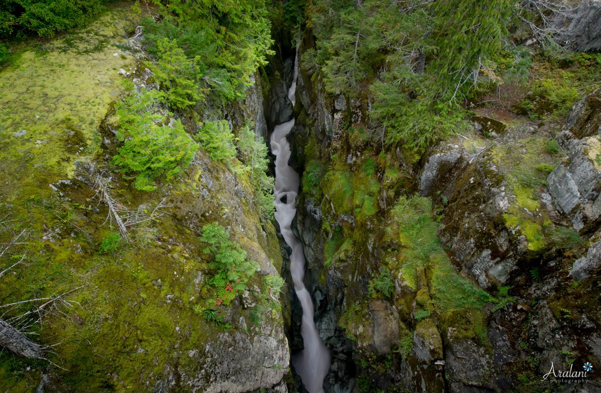 Mt_Rainier_TripReport006.jpg