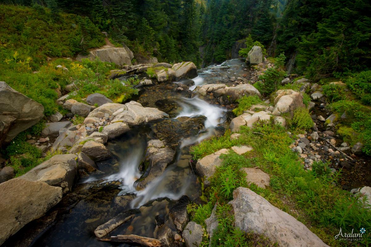 Mt_Rainier_TripReport011.jpg