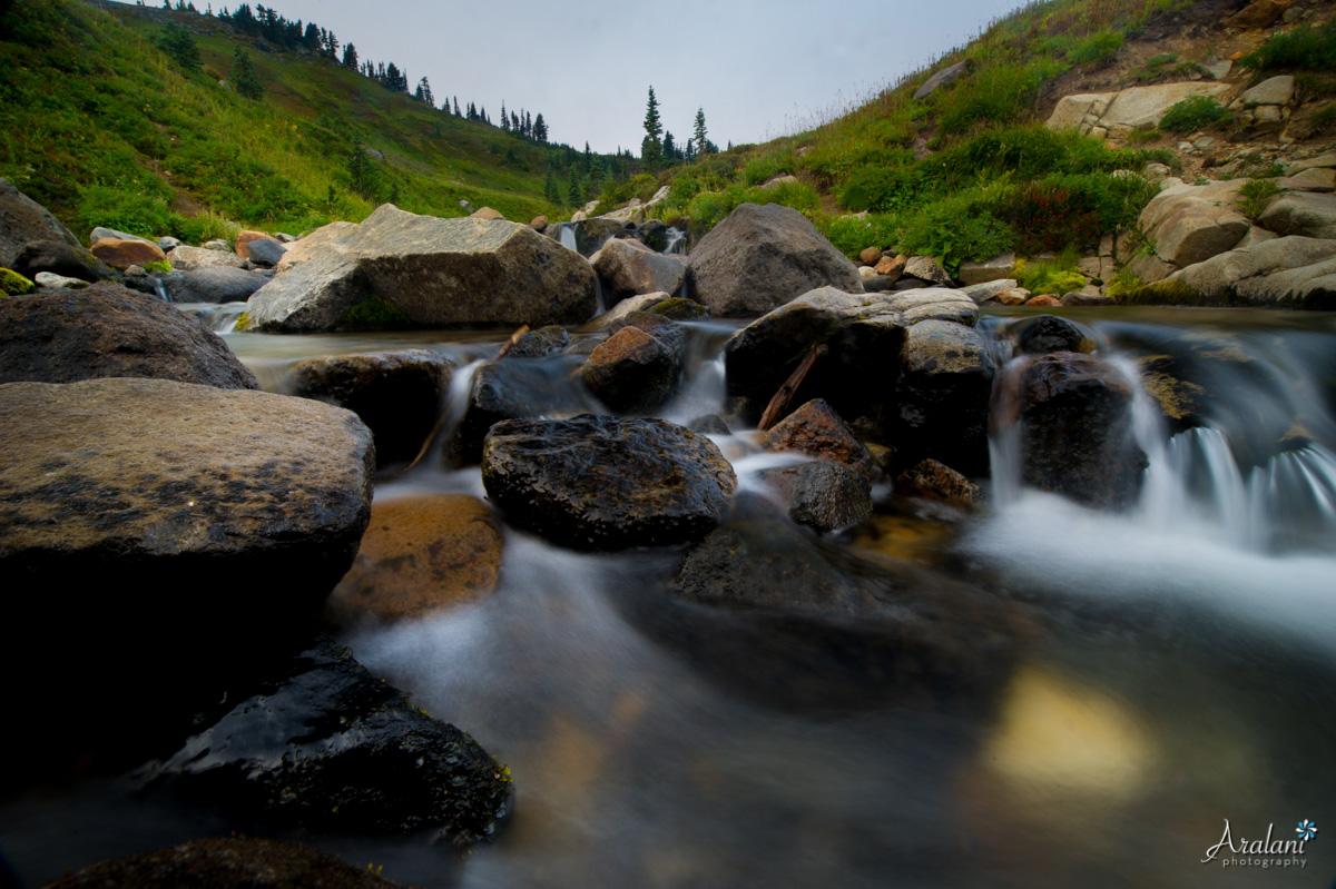 Mt_Rainier_TripReport013.jpg