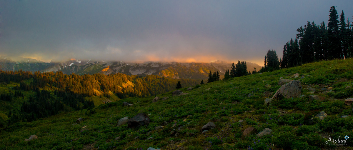 Mt_Rainier_TripReport014.jpg
