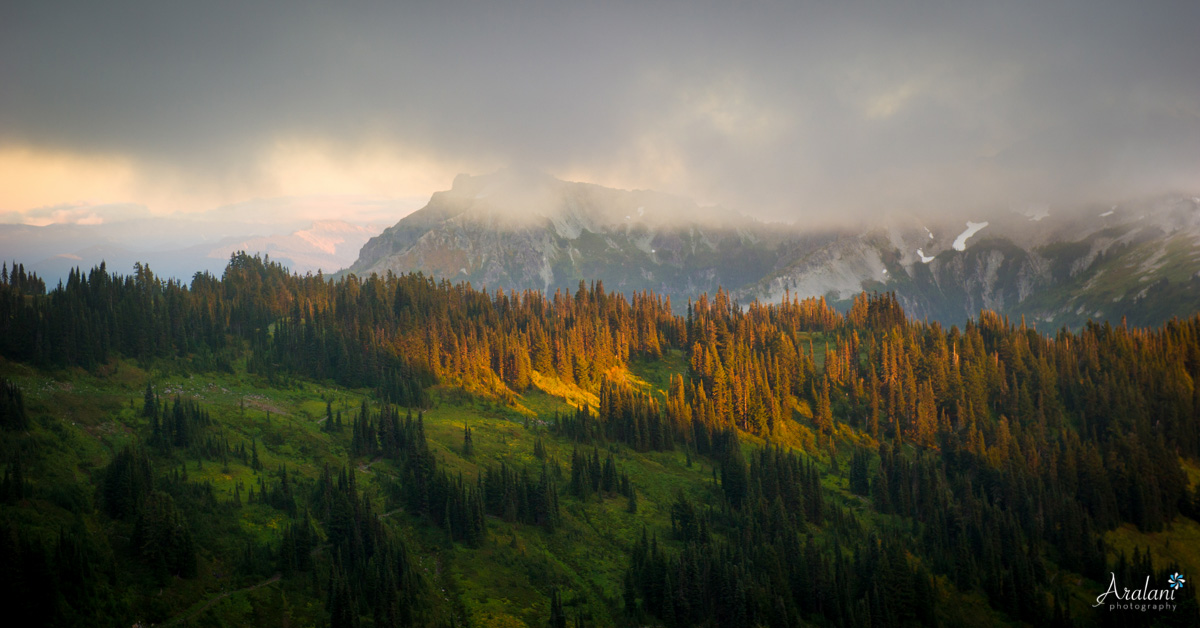 Mt_Rainier_TripReport015.jpg