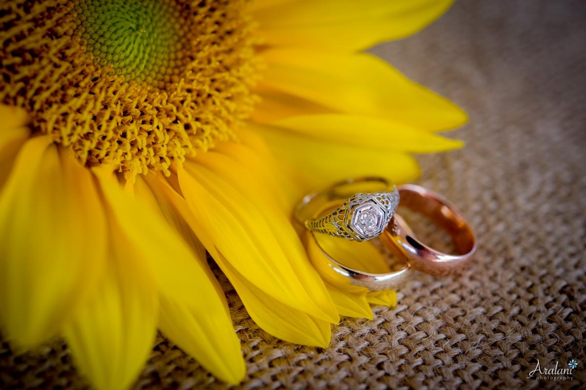 Sauvie_Island_Blue_Heron_Herbary_Wedding0052.jpg