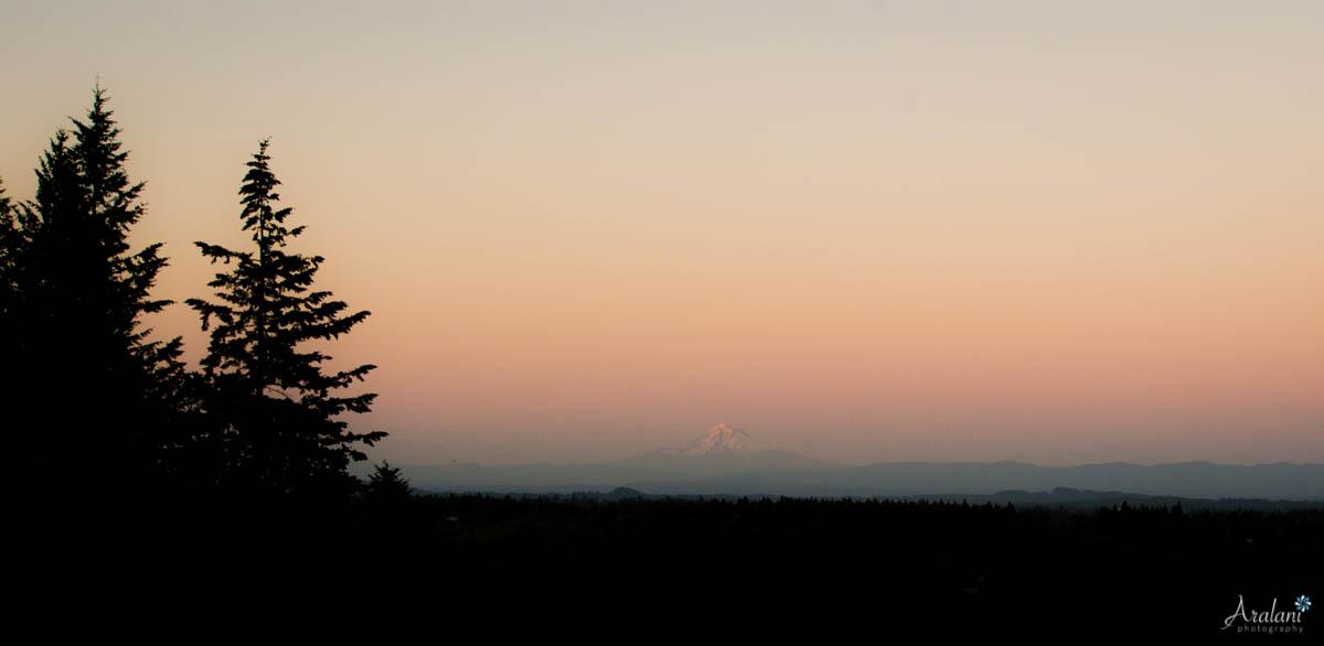 Oregon_Golf_Club_Wedding_Blog0051.jpg