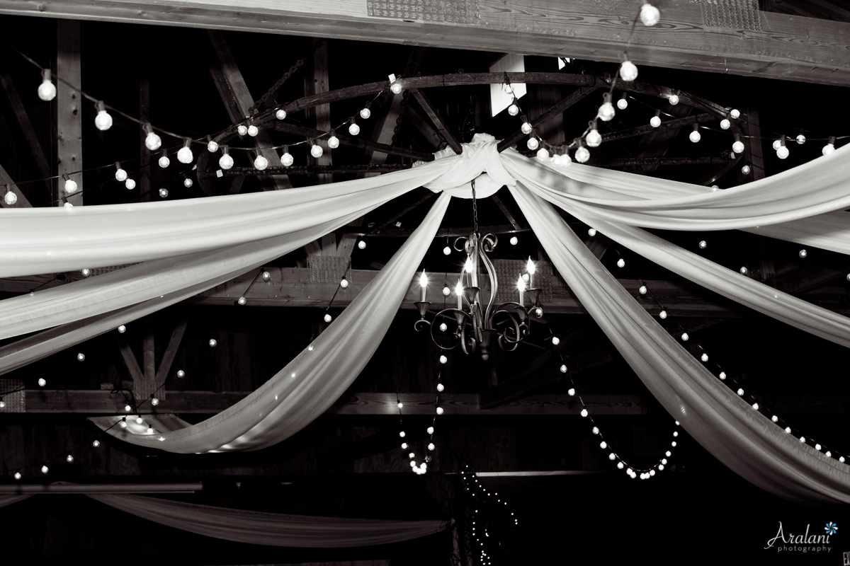 Oakview_Acres_Wedding_ER0046.jpg