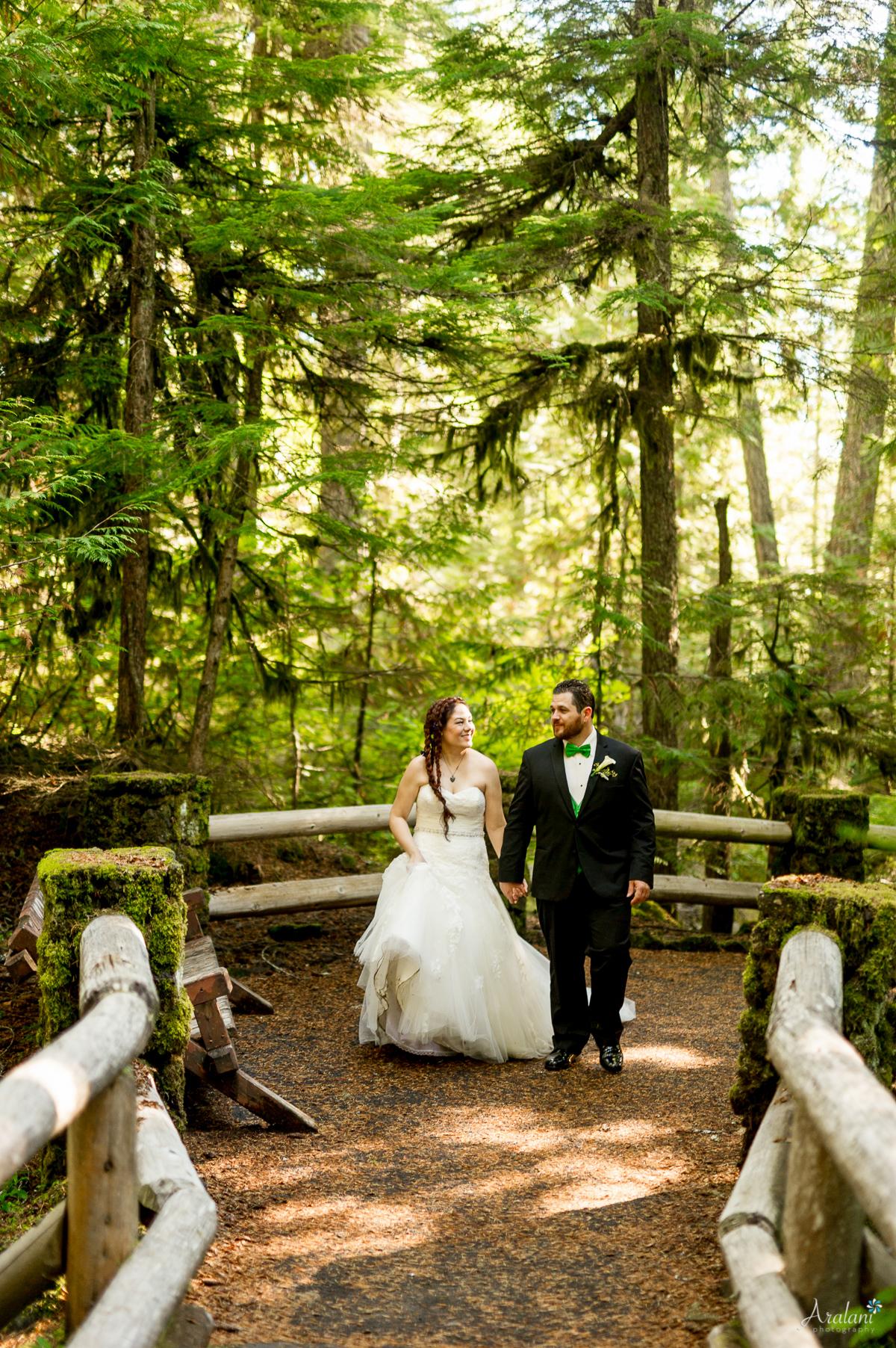 Sahalie_Falls_Waterfall_Wedding0016.jpg