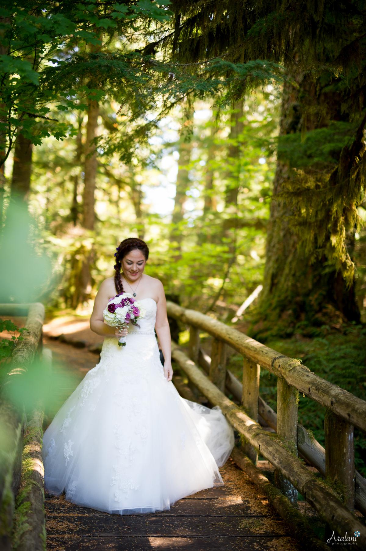 Sahalie_Falls_Waterfall_Wedding0004.jpg